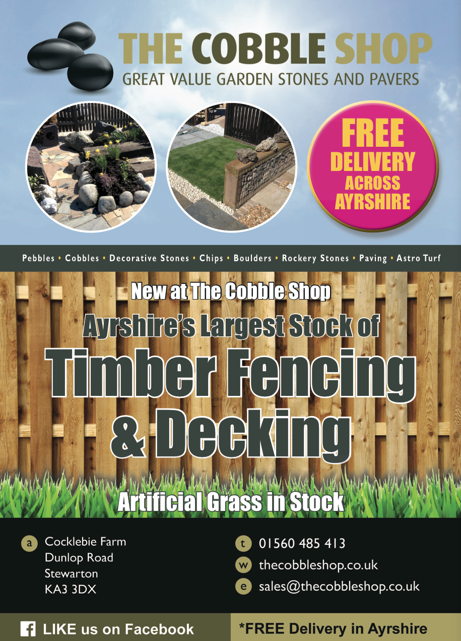Timber Ad A4